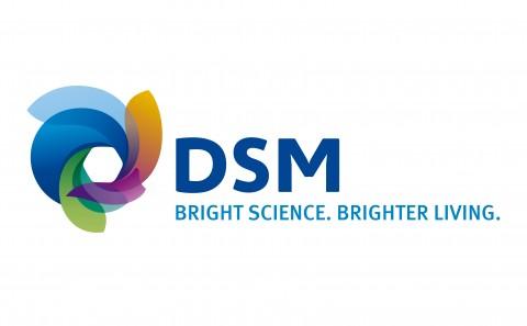 DSM_MasterLogo-01-01
